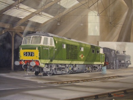 class35 Hymek in the shed